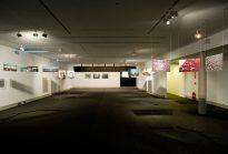 Exposición y Gala Notodo Fotofest